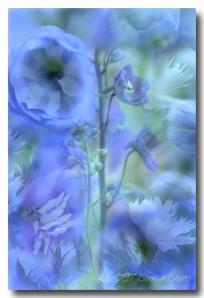 bluefantasy.jpg