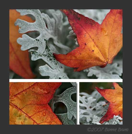 autumntrio.jpg